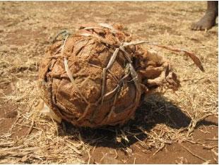 Soccer balls to Mozambique