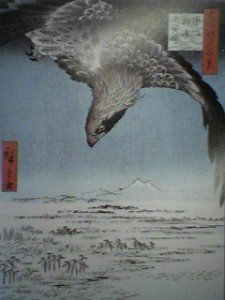 Bird of Prey and Mt Tsukuba