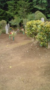 Rare mound type graves for full burial (before cremation was mandatory)