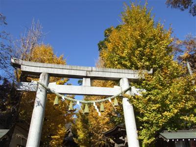 Raijinsama, Tsukuba
