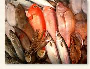Tai -- fish for festive occasions