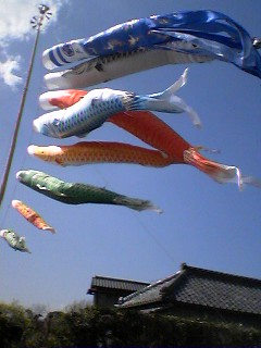 Carp Streamers (koi Nobori)near Lake Kasumigaura