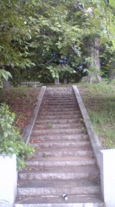 The Stairs Leading Up The SENGEN-ZUKA (千現塚), Tsukuba`s Mt Fuji