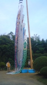 Taking carp streamers of of the rain- near Lake Kasumigaura