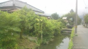 The URABORI (裏堀), an old irrigation canal ( or defensive moat) which runs down my street
