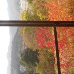 The autumn view from the soba restaurant MAI-IE which is located just near the opening to the Asahi Tunnel on the Yasato side