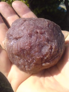 A heart and tasty home-made BOTAMOCHI (ohagi)