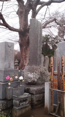 An old cemetery with fresh flowers for O-Higan near my house in Hojo, Tsukuba. The wooed slats on the right are TOHBA ( a word which derives from the sanskrit STUPA)- they have five notches on top representing the five elements, and are the common-man`s five-tiered pagoda
