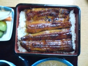 An UNAJU- unagi (eel) steamed and basted with a special sauce served in a laquer box