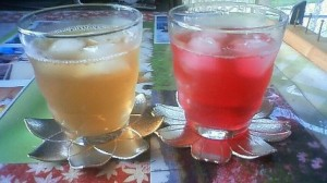 Two types of shiso juice (made by Asako Seo). The one on the left was made with green AOJISO leaves. The one on the right with AKAJISO