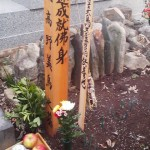 As can be seen in this photo, other offerings are also made to the soul of the departed- flowers, fruit, drink, incense and rice (scattered on the grave)