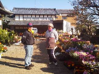 The yard of one of the old houses along the sloping road up to the Iina Shrine had been turned into a flower shop
