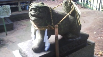 The KOMA-INU which in pairs stand guard in front of Shinto Shrines are forms of SHISHI ( photo of the Sugatami Jinja Shrine in Kamizakai, Tsukuba)