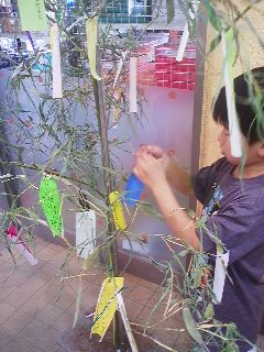 Fastening the wish to the Tanabata Tree (July 2, 2013)