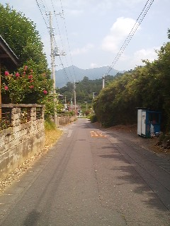 From the first segment of the walk- a look at Mt Tsukuba in the distance. Our destination is half-way up the mountain.