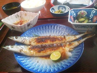 My lunch-  a sanma shio yaki (pike mackerel grilled with salt) set, at the restaurant ICHINOYA in Tsukuba (October 4th 20114)