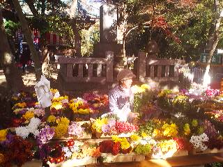 On the day of the festival a flower vendor sells her ware in front of the monument to Takegaki Sanzaemon