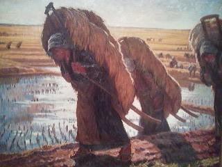 The Rice Harvest
