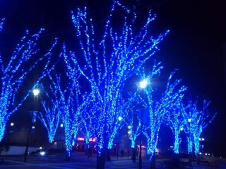 This year`s Chrismas illumination in Tsukuba is a cool blue- the color is actually changed every year !