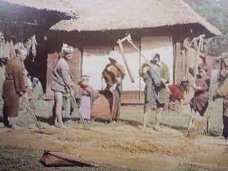 Hulling rice (1890)