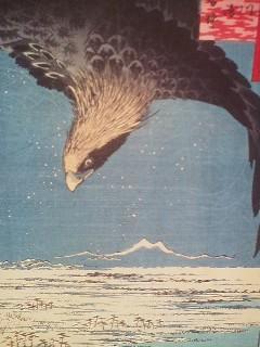 Mt. Tsukuba with raptor