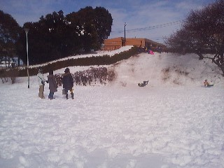 Taking advantge of the deep snow with a little sledding!