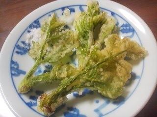 Tara no Me tempura (April 21st 2014)