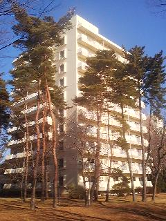 Official apartment house surrounded by red pine