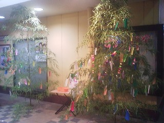 Tanabata bamboos in front of a supermarket in Matsushiro, Tsukuba (July 1, 2014)