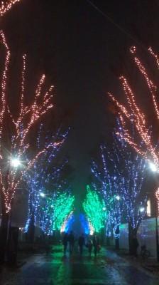 Tsukuba Center 2014