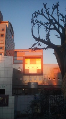 "Once a year, on the day of the winter solstice, just before sunset, the ""Sun-box"" at the Tsukuba Center Complex lights up like this. The past few years have been a bit cloudy- but this year (2014) I was able to take this photo- Thanks to Dan for telling me about- another of Tsukuba`s curiosities!"