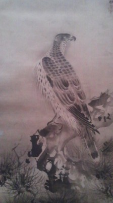 Painting of a goshawk mounted on a hanging scroll - on display at the National Museum in Ueno as an AUSPICIOUS NEW YEAR`S IMAGE