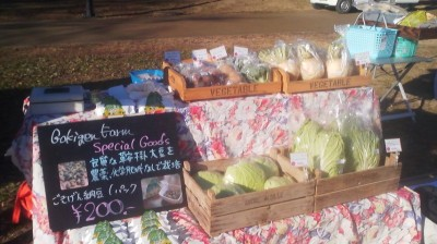 Organically grown vegetables from GOKIGEN FARM- I actually get home delivery from them once a week !