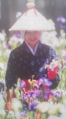 At the Iris Festival (Ayame Matsuri)