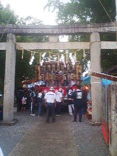 Struggling to get the hefty MIKOSHI (portable shrine) through the torii gate.