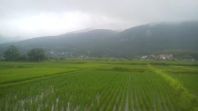 The view of Mt. Hokyozan (aka Mt. Odayama) from the Suzuya Shokudo`s window