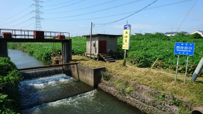 The Nishiyadagawa River (西谷田川) where it passes near the Midorino Station in Tsukuba. Further south, in Ryugasaki, close to where it pours into Lake Ushiku, the body of Yasuko Shinji (42) was discovered. She was stabbed to death by a 16 year-old high-school student. The motive is as yet unknown.