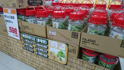 Plastic jars for making plum liquor (ume shu) on sale at a home-supply store in Tsukuba (June 2017)