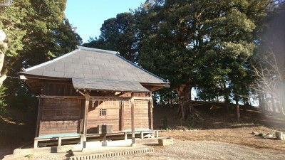 The Kashima Shrine in Matsuzuka with the tumulua behind it. Note the giant sacred oak.