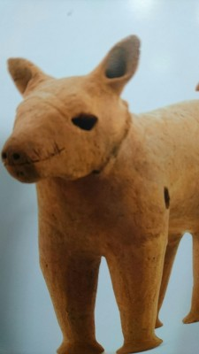 Sixth century haniwa terracotta figurine depicting a dog - notice the lack of a forehead. (unearthed in Osaka Prefecture)