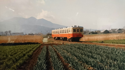 The old Tsukuba Tetsudo Railroad that started running between Tsuchiura and Iwase back in 1918, went out of service on April 1, 1987. The tracks were then removed and a cycling path, called the Rinrin road put in its place.