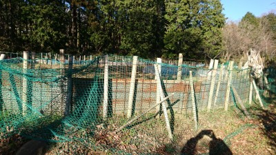 The people near the shrine have had to put these fences up to keep wild boars out of their fields