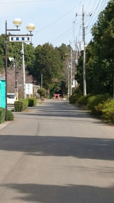 The torii gate leading into the woods is about 300 meters behind the shrine - just cross the street and follow the road
