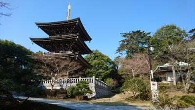 Behind the Koku-zo Hall is this pagoda.