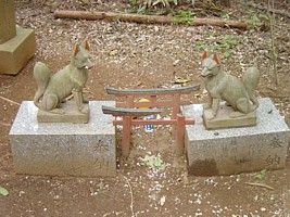Small fox statues in the woods behind the Onabake Shrine near the site where the fox- who-had-returned- the-kindness-done-to- it, is said to have had its den.