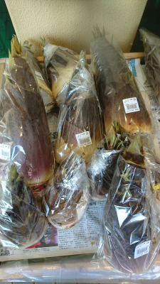 Unpeeled bamboo shoots on sale at Waku Waku Hiroba, in Tsukuba (April 9, 2018)