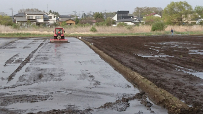 Readying the paddy fields on the day of the school entrance ceremony (Otto, Tsuchiurs - not far from Arakawaoki Station